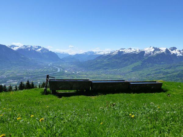 Vorder Alp auf 1200 m, das St. Galler Rheintal nach dem letzten Waldstück