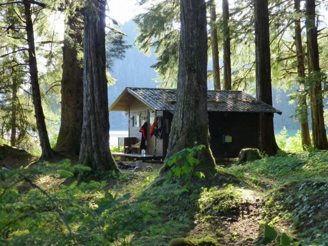 Harding River Cabin