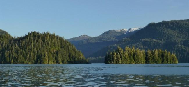 Steelhead Fishing im Südosten Alaskas